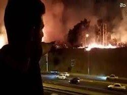 آتش در جنگلها و پارکها؛ عمدی در کار است! + فیلم
